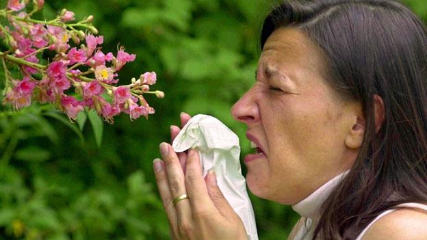 Wenn aus Heuschnupfen Asthma wird