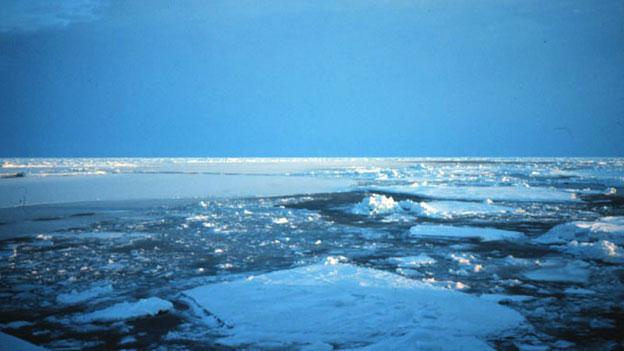 Heiss begehrte Arktis