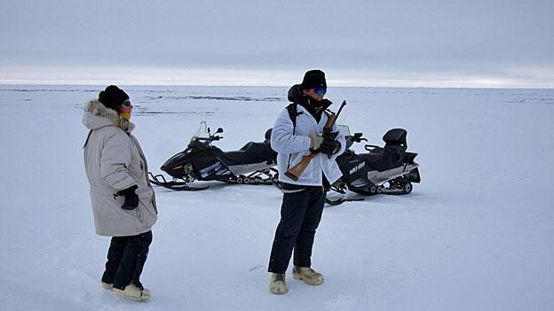 Arktis-Serie: Beunruhigendes Phänomen des Klimawandels