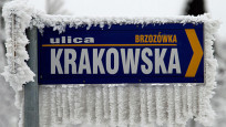 Audio «Krakaus Bevölkerung kämpft gegen Kohleheizungen» abspielen