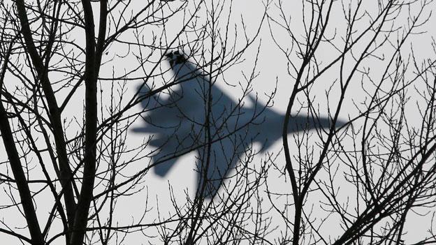 Russland provoziert mit heimlichen Patrouillenflügen