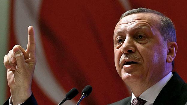 Erdogans Machtsystem