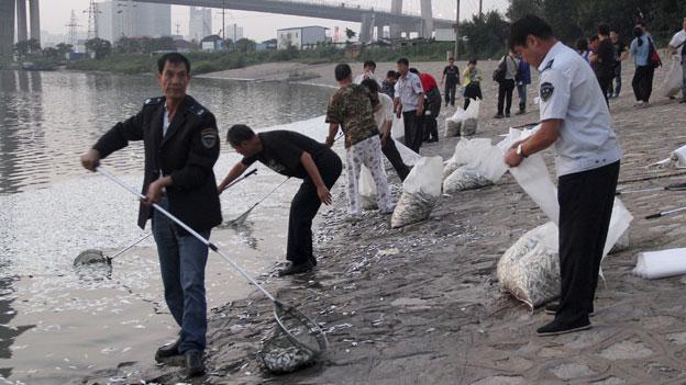 Chinas beunruhigende Reaktionen auf Katastrophen