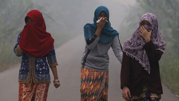 Rauch nebelt Millionen Menschen in Südostasien ein