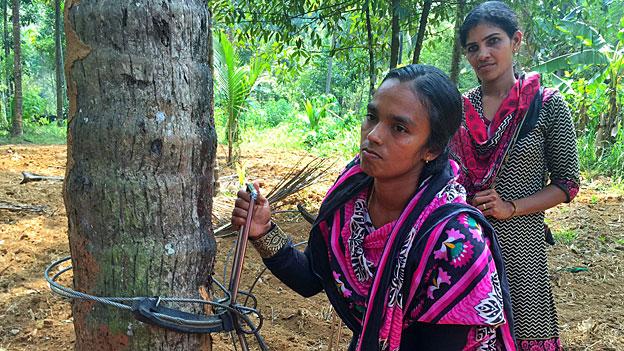 Kletterinnen im Land der Kokospalmen
