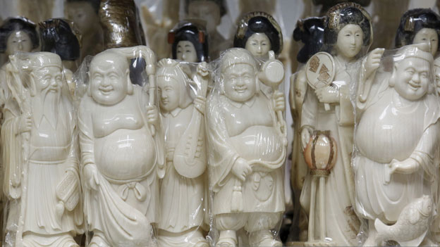 «Elfenbein gehört zum kulturellen Erbe Chinas»
