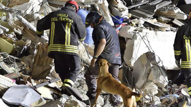 Erdbeben in Italien: Verzweifelte Suche nach Überlebenden