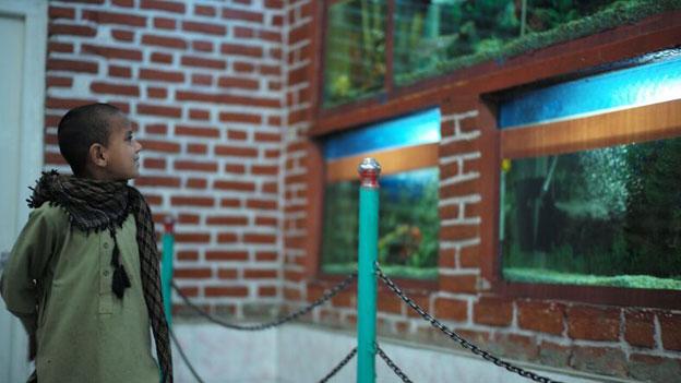 Der Zoo in Kabul - eine Oase des Friedens