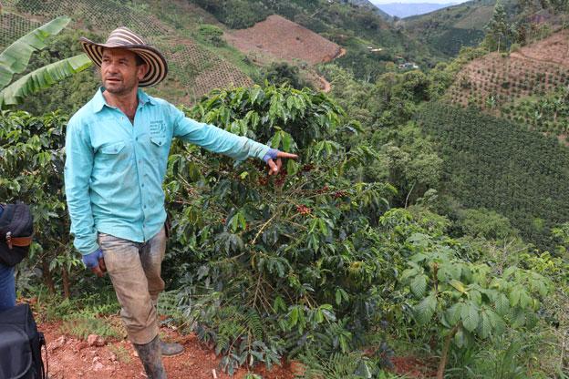 Die Sorgen kolumbianischer Kaffee-Bauern