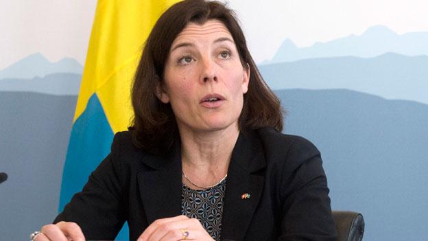Schweiz und Schweden: gemeinsame Interessen beim Militär