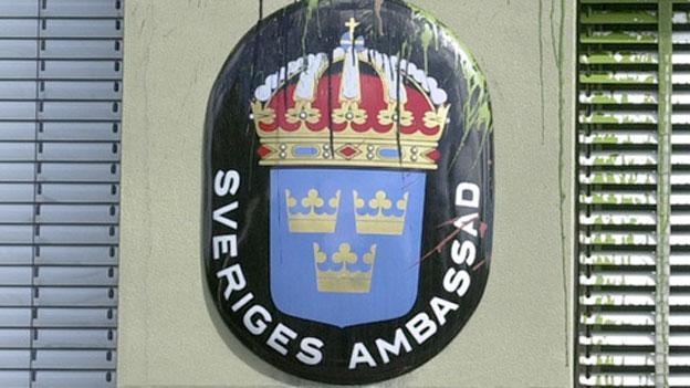 Gripen: Kritik an schwedischem Botschafter