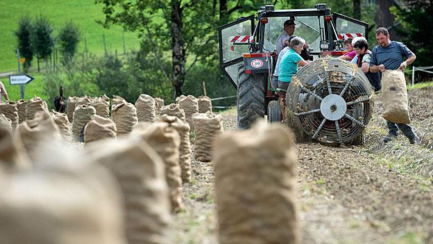 Mehr Markt in der Landwirtschaft und mehr Ernährungssicherheit