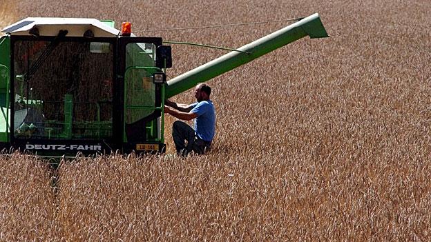Bundesbudget - mehr Geld für die Bauern