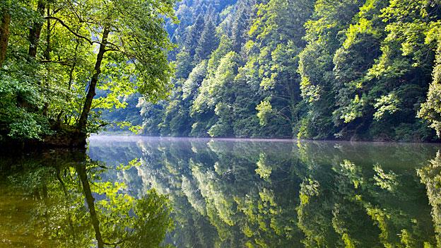 Saubere Schweizer Flüsse und Bäche