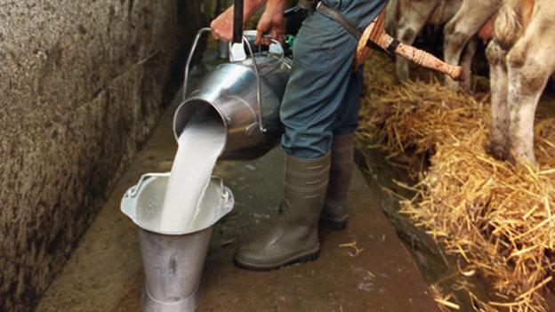 Was ist ein fairer Milchpreis?
