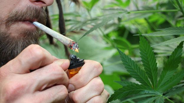 Sucht Schweiz fordert klare Cannabis-Politik