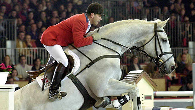 Rennpferd Calvaro lebt weiter - als Klon «Calvaro Z»