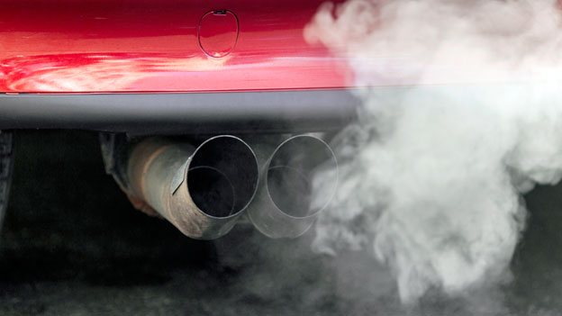 Subventionierte Umweltverschmutzung
