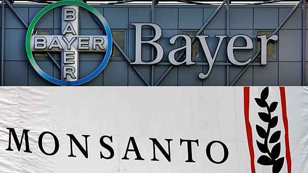 Bayer buhlt um US-Konzern Monsanto