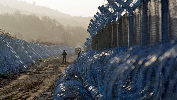 Zäune gegen Flüchtlinge bringen Wildtieren den Tod