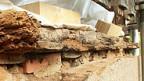 Verfaulte Balken einer Holzdecke.