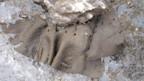 Langsam gibt das Eis seine Schätze frei, wie dieses prähistorische Stück Leder.