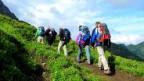 Erholsames Wandern kann Wildtiere stressen.