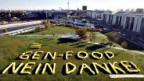 Schweizerinnen und Schweizer sind skeptisch gegenüber Gen-Food.