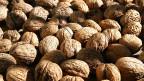 Stehen auf jeder Steinzeit-Diät ganz oben: Baumnüsse beinhalten viele Proteine und Mikronährstoffe.