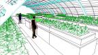 Grüne Dächer, grüner Gedanke: Gewächshäuser mitten in der Stadt.