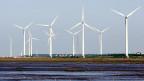 Windturbinen in China.