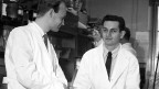 Die Forscher Heinrich Matthaei (links) und Marshall Nirenberg, 1961 in ihrem Labor.