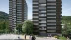 Vorzeigeprojekt Sihlweid: Die energieverschwenderischen Hochhäusern aus den Siebzigerjahren werden mit Solarpanels ausgestattet.