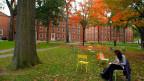 Die Harvard-Universität in Cambridge, Massachussetts, nicht online, sondern real. Oktober 2012