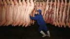 Dioxin-verseuchtes Schweinefleisch kann Krebs verursachen.