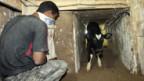 Sogar Tiere werden durch Tunnels geschmuggelt.
