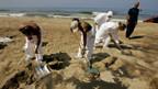 Libanons Badestrände werden von Abfall gereinigt.