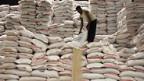 Die philippinische Regierung hat sich für die Reis-Krise gerüstet.