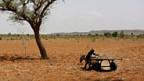 Steigende Trockenheit in der Sahelzone.