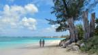 Die Idylle trügt: Die Cayman Islands werden von einem Korruptionsskandal erschüttert