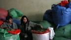 Ein Kunde prüft die Qualität der Coca-Blätter. La Paz, Bolivien.