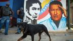 Hugo Chavez neben Simon Bolivar an einer Wand in der venezolanischen Hauptstadt Caracas.