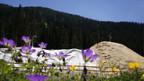 Ein Depot aus Kunstschnee in Davos.