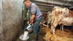 Es gibt zuviel Milch auf dem Markt.