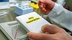 Bundesrat will Embryonen-Tests zulassen