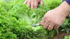 Veränderte Konsumgewohnheiten fordern die Bauern.