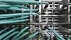 Welche Daten flossen beim Bafu durch welche Leitungen? Die Übersicht ging verloren - und das Projekt macht bankrott.