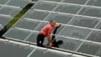 Solarmodule schon bald aus heimischer Produktion.