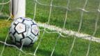 «Wir waren überheblich, arrogant», sagt Wohlen-Trainer Ranko Jakovljevic nach der bitteren Niederlage gegenüber SRF.