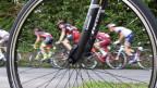 Keine strafrechtliche Verantwortung: Das Aargauer Obergericht spricht Unfallfahrer von den Radsporttagen Gippingen frei.